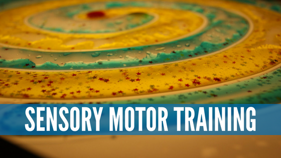 special needs sensory motor training